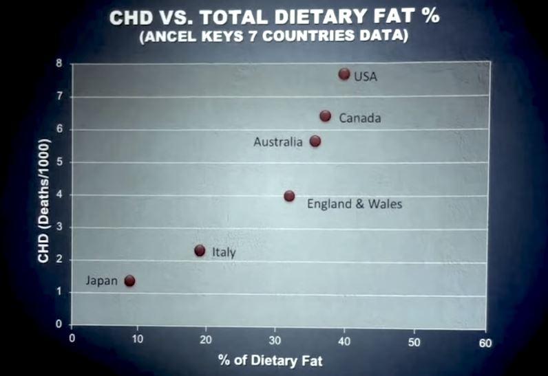 estudio sobre las grasas son malas